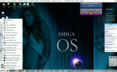 AmigaOS3_UAE_screengrab2_l4